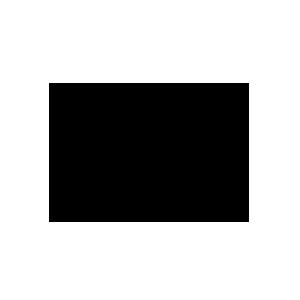 kz_300